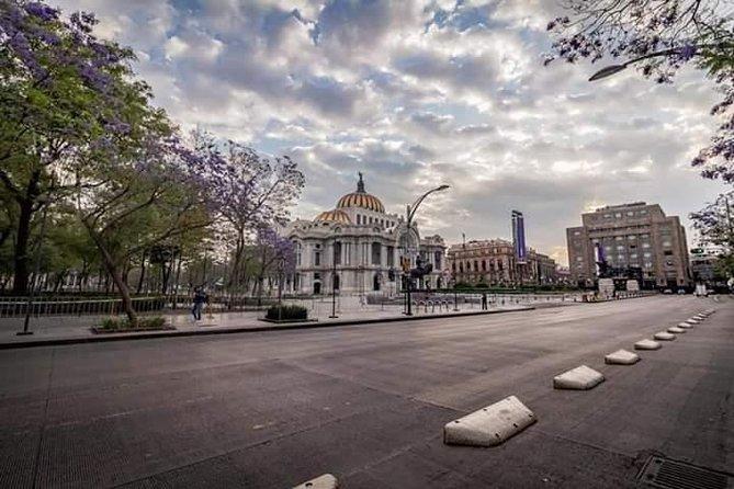 Virtual tour in Mexico City Live.