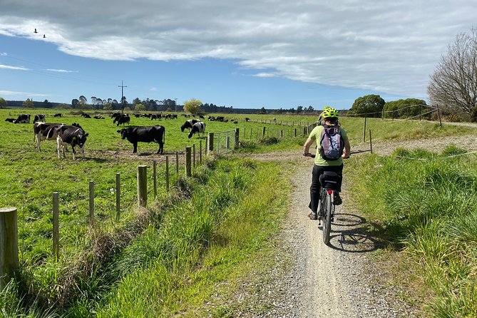 Self-Guided Nelson to Mapua Cycle Adventure
