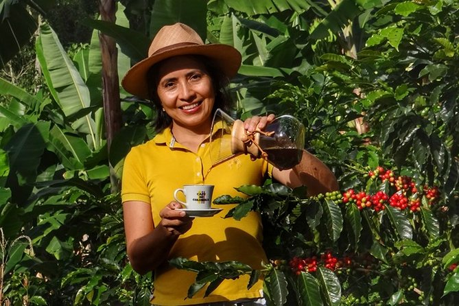 [Online Experience] Explore the Coffee Process_From Tree to Cup