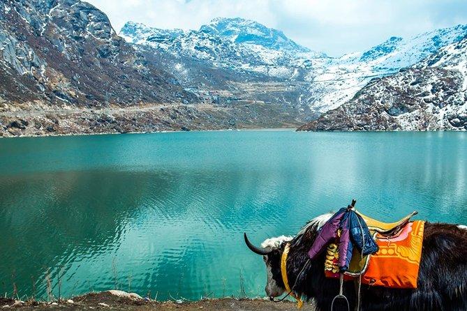 Tsomgo Lake & Baba Mandir Excursion trip From Gangtok