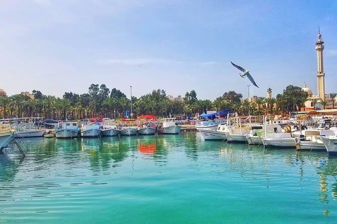 Half-Day Private Tour to Tripoli