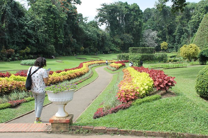 Private Day Excursion to Kandy from Colombo