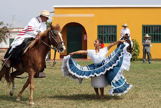Peruvian Paso Horse & Marinera with lunch in Trujillo