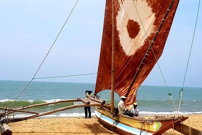 Day Tour To Negombo