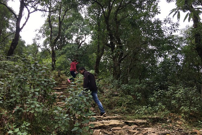 Easy Hiking to Dhampus Village from Pokhara