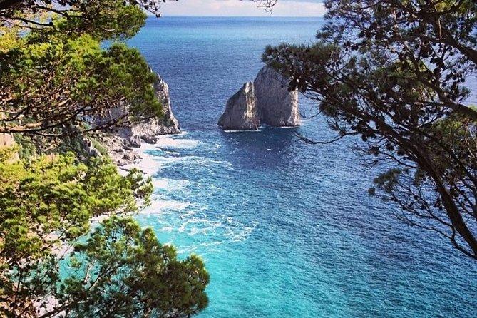 Capri and Pompeii Day Tour from Positano or Amalfi