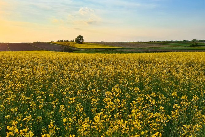 Golden Slavonia and Baranja Gourmet Tour - 6 days - Small/Private Group