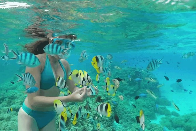 Bali Snorkeling at Blue Lagoon And Tanjung Jepun Beach All Inclusive