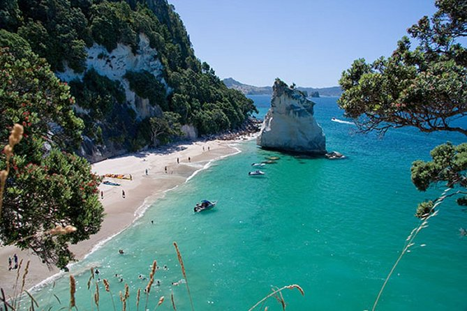 Coromandel, Cathedral Cove and Hot Water Beach Full Day Tour From Auckland
