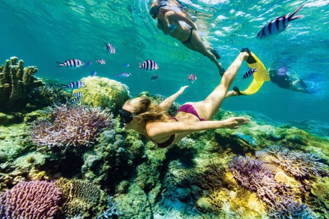 All Inclusive Bali Blue Lagoon Snorkeling with Lunch and Transport