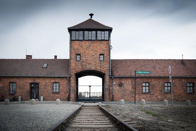 From Kraków: Auschwitz-Birkenau Museum Tour