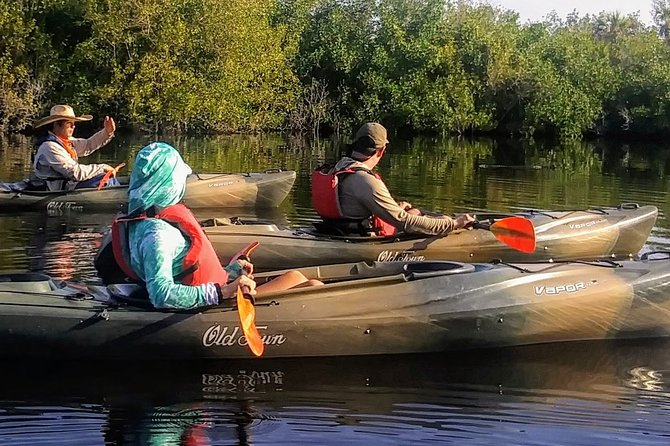 Kayak the Everglades Mangrove Forest and Marsh Prairies with Wildlife Viewing!