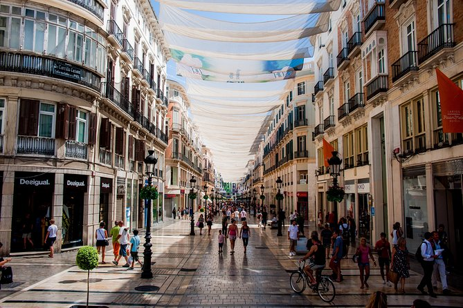 Walking Tour of Malaga with entrance to Picasso and or Thyssen Museums
