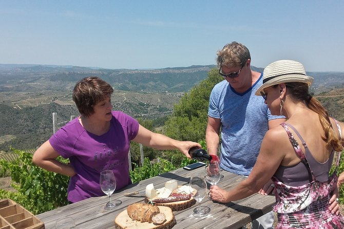 WINE TOUR PRIORAT: Visit 2 Top Wineries, Wine Tasting & Gourmet Lunch
