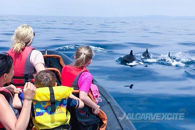 Cheapest Family Friendly Boat Trip From Vilamoura Algarve