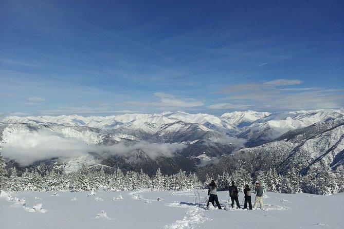 High snowshoe excursion