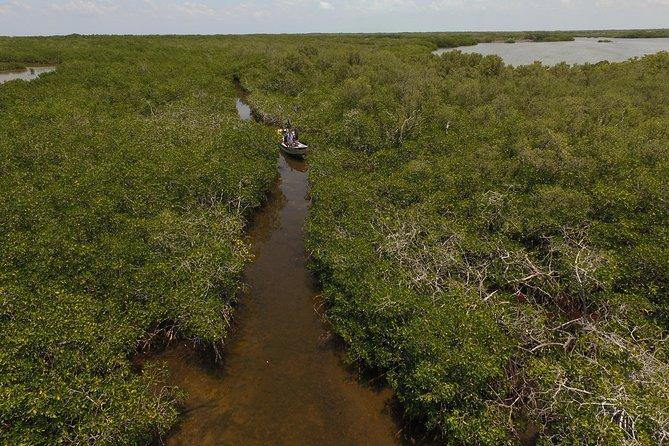 Private Mangrove Adventure (Boca Iglesia Costa Mujeres)