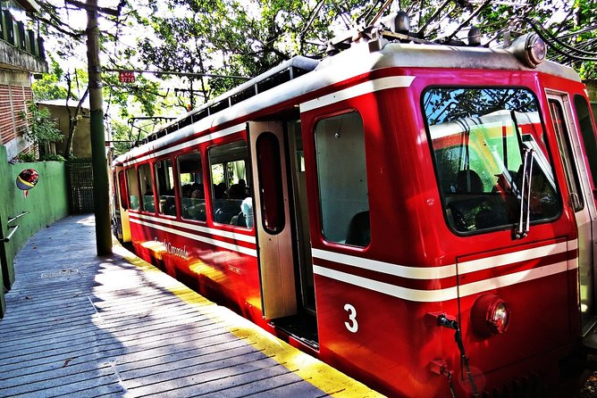 Christ the Redeemer Train + City Tour