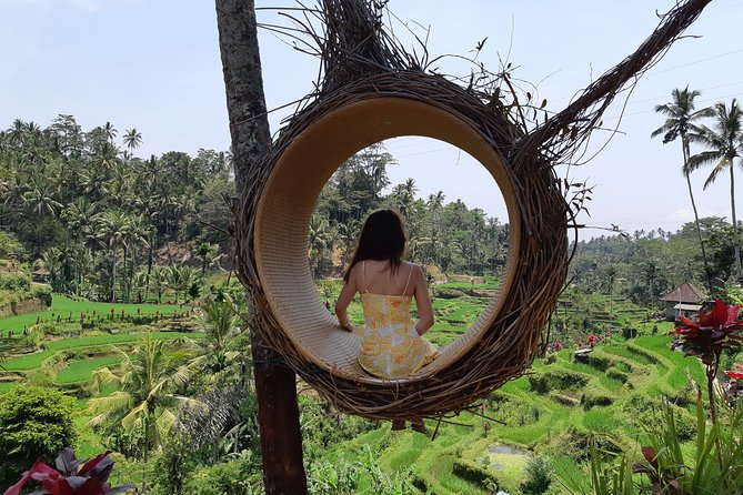 Best Of Ubud All Inclusive Tour, Waterfall,Rice Terrace and Temple