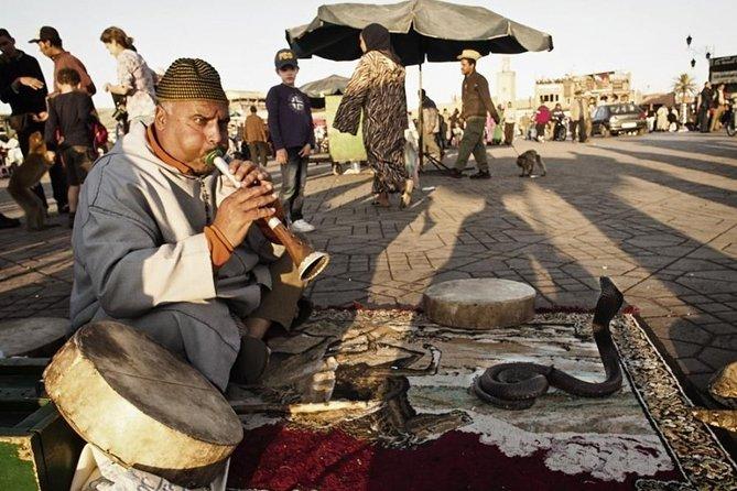 Half-Day Private Guided Marrakech Tour through Medina's Gems