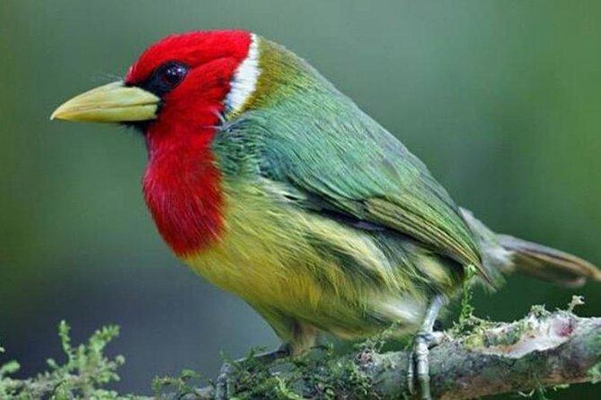 5 Days - Natural Ecuador
