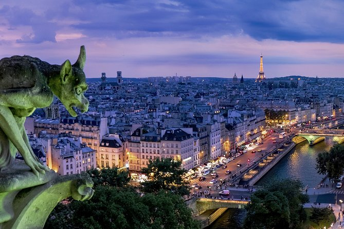 Private Paris Night City Tour with Hotel Pickup by Minivan