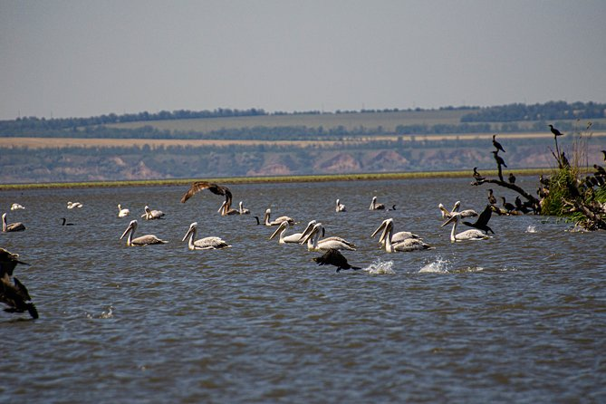 Odessa ecological river tour in nature park