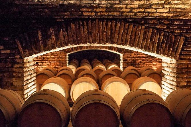 Program 3 days and 2 nights Santiago city and concha y toro vineyard
