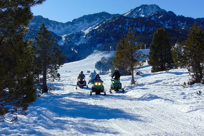 Snowmobile guided tour