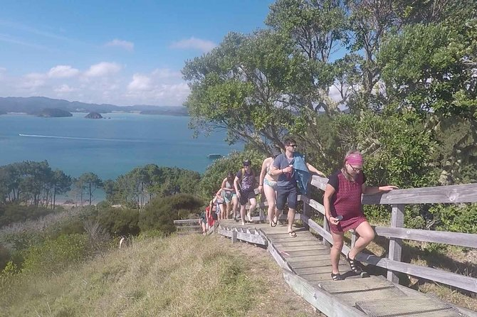 Full-Day Adventure Cruise with Lunch in Bay of Islands