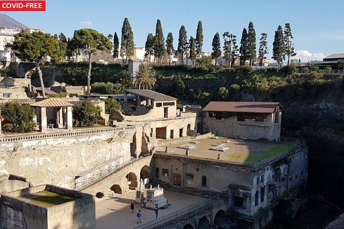 Herculaneum and Vesuvius Tour in Luxury Bus