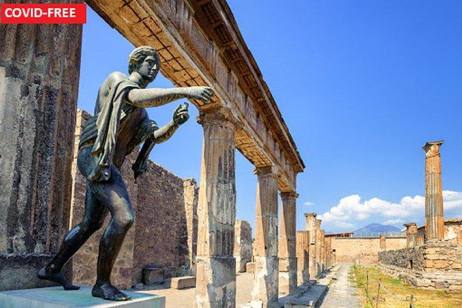Pompeii Walking Tour with transportation from Naples