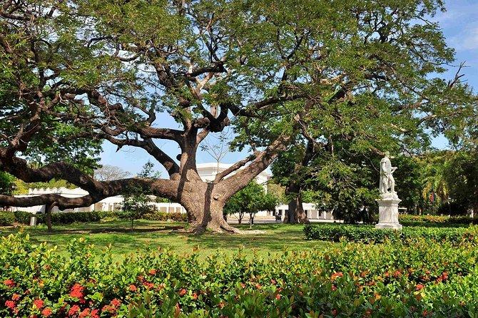 Botanical Garden: Quinta de San Pedro Alejandrino