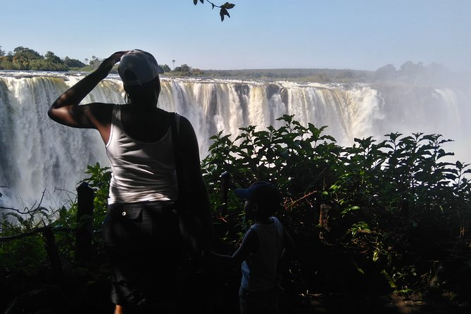 Victoria Falls Guided Tour with Pickup
