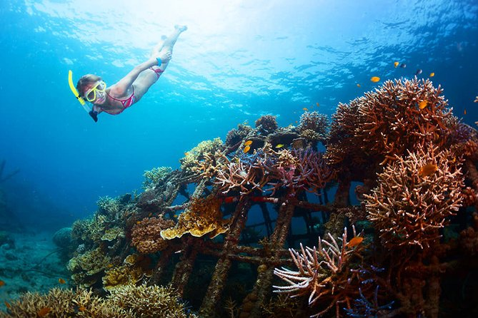 Actively enjoy marine sports! Snorkeling + 3 types of marine sports (parasailing + jet ski + banana boat etc.) / Round-trip hotel transfer included