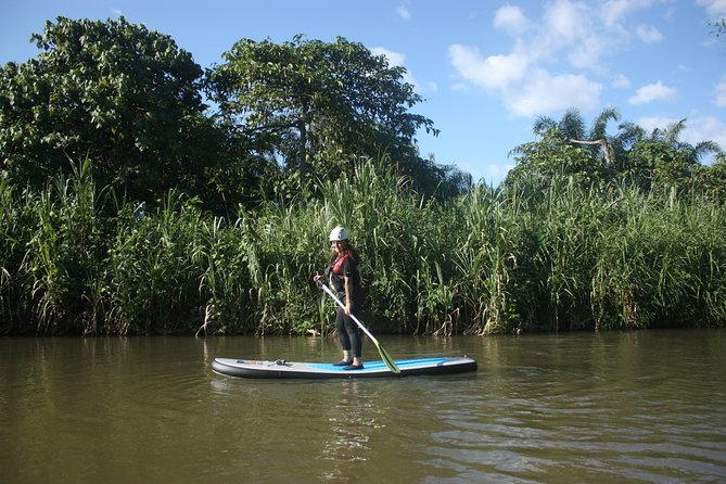 Stand-Up Paddle Boarding at Kampar River