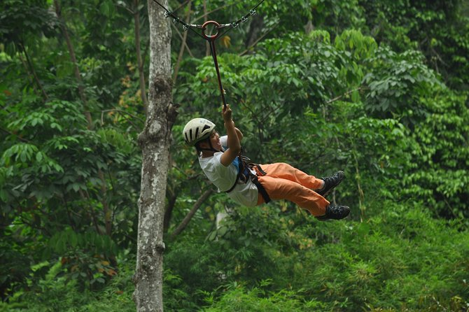 High Rope at Mountain School