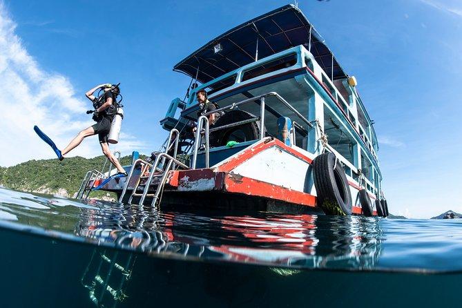 Thai Intro + Dive - 13 Day