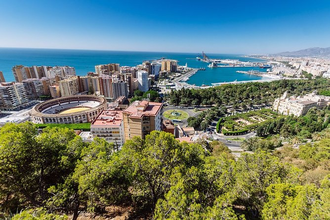 Private 3-hour walking tour of Malaga with official tour guide