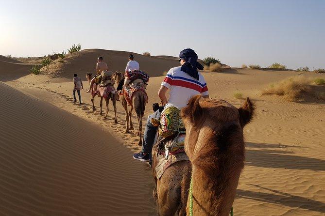 An Overnight Safari into Authentic Desert