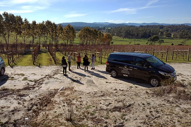 Tamar Valley Wine Tour with Wine Tasting and Lunch