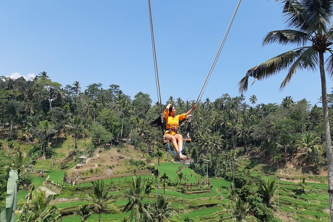 Ubud Tour, Monkey Forest, Swing, Water Temple and Waterfall