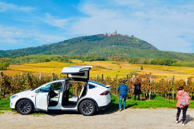 Alsace Discovery Private Tour with Local Villages & Castles