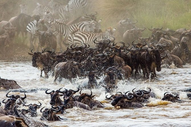 7 Days, WILDEBEEST GREAT MIGRATION Adventure Safari in Northern Tanzania.