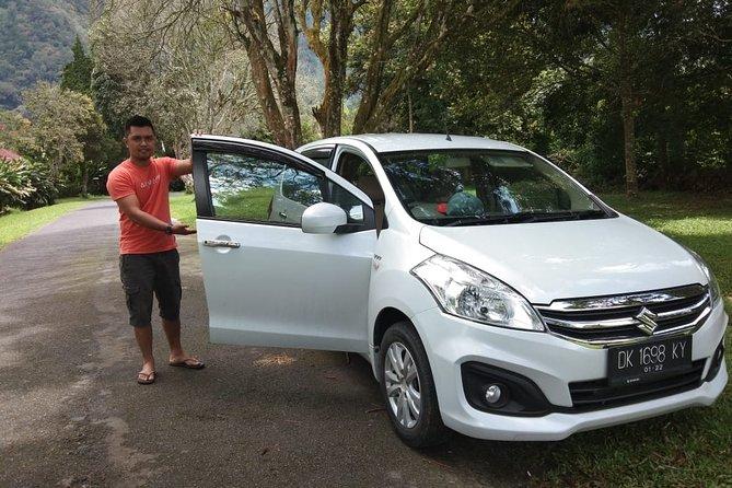 Private Bali Driver