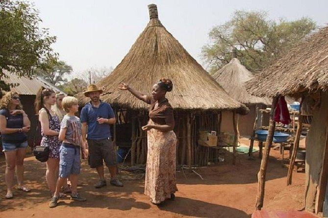 Private Tour to Mukuni Village in Zambia