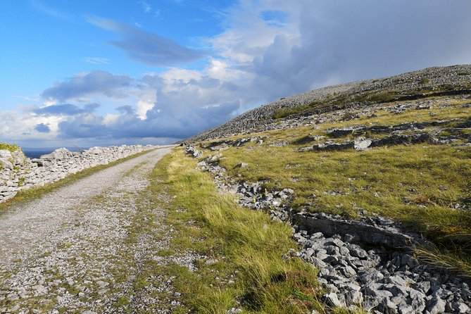 The Burren and Cliffs of Moher Full Day Private Tour from Galway