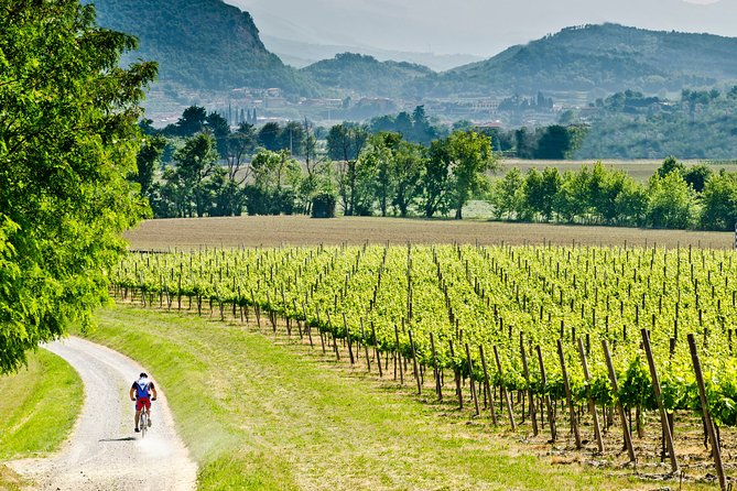 Private Day Tour with Lunch in Franciacorta
