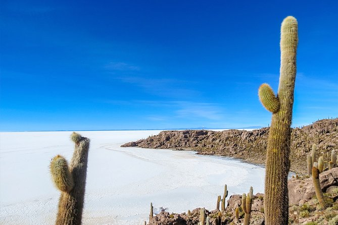 Uyuni Salt Flats - FULL DAY - English Speaking Guide