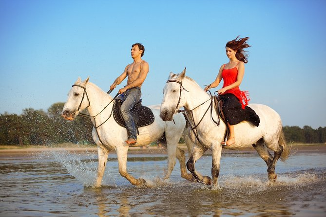 Beach & Rainforest Horseback Riding Expedition. Private Tour